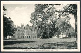 Précigné - Château De Bois-Dauphin - Voir 2 Scans - Other Municipalities