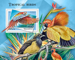 Maldives. 2018 Tropical Birds. (801b) - Birds