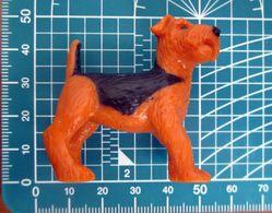 CANE MLTD 1993 TERRIER DOG MINIATURA - Dogs