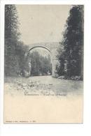 20421 - Rossinières Pont Sur La Sarine - VD Vaud