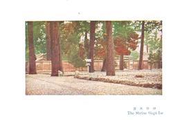 POSTAL  -ISE  -JAPON  -THE SHRINE GEGU ISE  (SANTUARIO DE ISE GEGU) - Japón