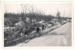 Photo Amateur Non-localisée Accident De Voiture, Route ( Immatr. Gard ? ) - Automobiles