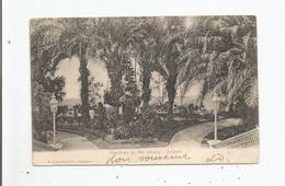 JOHORE (JOHOR) GARDENS AT THE ISTANA 1906 - Malaysia