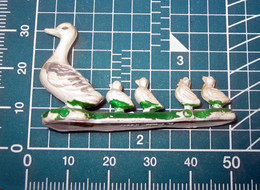 ANATRA HONG KONG - Oiseaux - Canards