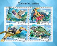 MALDIVES 2018 - Tropical Birds, Colibri. Official Issue - Hummingbirds
