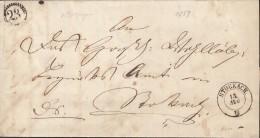 BADEN Dienst-Faltbrief Von Nenzingen, Nach Stockach, 13.August 1859 - Bade