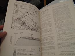 ARGILES A MEULIERES  ET CALCAIRES DE BEAUCE EN HUREPOIX  SYNTHESE GEOLOGIQUE 1979 J.-C. GRISONNI (RAPPORT DE RECHERCHE) - Wetenschap