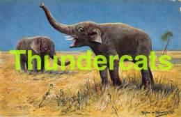 CPA ILLUSTRATEUR MULLER AUGUST MUNCHEN ARTIST SIGNED ELEPHANT - Mueller, August - Munich