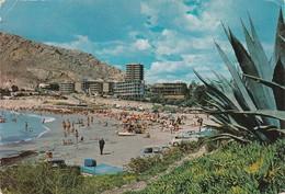 POSTCARD SPAIN ESPAÑA - ALICANTE - PLAYA DE ALBUFERETA - VISTA PANORAMICA - Alicante