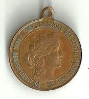 """932 """" ESPOSIZIONE INTERNAZIONALE TORINO 1911-50° ANNIV. DELLA PROCLAMAZIONE DEL REGNO D'ITALIA 1861-1911 """" ORIG - Italy"""