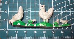 GALLINA - Birds - Chicken