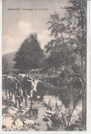 Calizzano-Sv-Paesaggio Sul Bormida-Vg Il 1926-Integra E Originale Al 100%-an1- - Savona
