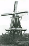 Oldehove; Molen Aeolus - Niet Gelopen. (Uitgever?) - Groningen