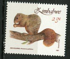 Zimbabwe 1991 23c Red Squirrel Issue #633  MNH - Zimbabwe (1980-...)