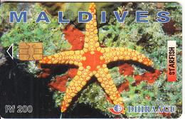 MALDIVES ISL. - Starfish, CN : 256MLDGID, Used - Maldives