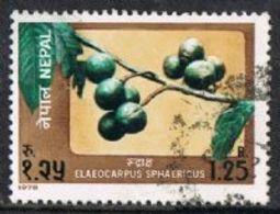 Nepal SG370 1978 Fruits 1r.25 Good/fine Used [17/16347/4D] - Nepal