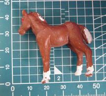 CAVALLO HONG KONG - Horses