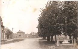 Dépt 80 - MÉRICOURT-L'ABBÉ - ÉPREUVE De CARTE POSTALE (photo R. LELONG) + PLAQUE De VERRE D'origine - Place Et Monument - France