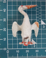PELLICANO - Pájaros