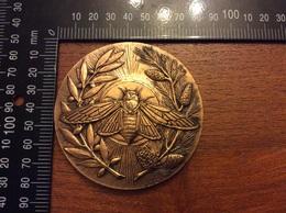 Médaille La Provence 37eme Tif Antibes Juan Les Pins - Other