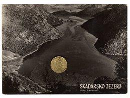 Lago Di Scutari  Liqeni I Shkodrës  Skadarsko Jezero- NON VIAGGIATA - Serbia