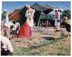(PF 125) Afghanistan Nomad Village - Afghanistan