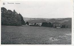 AMONINES : Panorama - RARE VARIANTE - Erezée