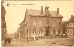 HERSTAL   ---   Maison Communale   ( Attelage ) - Herstal