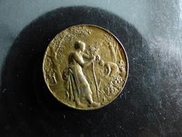 Petite Medaille Dubois Paris - Professionals/Firms