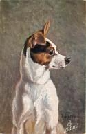 ANIMAUX , Chien , Fox Terrier , Oilette Raphael Tuck , * 317 20 - Dogs