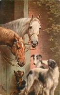 ANIMAUX , Chien , Levrier , Oilette Raphael Tuck , * 317 21 - Honden