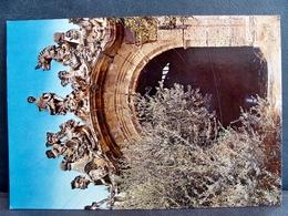 (FG.F31) BAGHERIA - VILLA PALAGONIA, UN GRUPPO DI MOSTRI (PALERMO) NV - Palermo