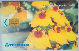 RM50 Oncidium Varicosum - Malaysia