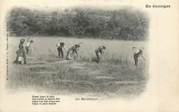 15 , En Auvergne , Collection GELY N° 66 , Les Moissonneurs , * 329 51 - France