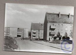 BRD - AK (DDR-Zeit) - Elbingerode / Neubaugebiet - Deutschland
