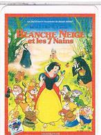 DISNEY  BLANCHE  NEIGE  ET  LES  7  NAINS  CPM  BE  1Z726 - Disneyworld