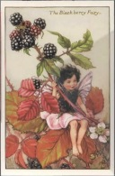 Fée Fiabe Fata Fairy - Black Berry - Wild Rose - Butttercup - Snwdrop - Privet Fairy - Dandelion - Lot 6 Cards - Märchen, Sagen & Legenden