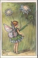 Fée Fiabe Fata Fairy - Yarrow - Thiste - Scabious - Wild Thyme - Rose Hip - Convolvulus - Lot 6 Cards - Märchen, Sagen & Legenden