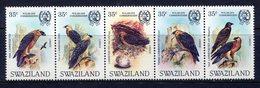 Swaziland 1983 Wildlife Conservation - Lammergeier Set MNH (SG 425-429) - Swaziland (1968-...)