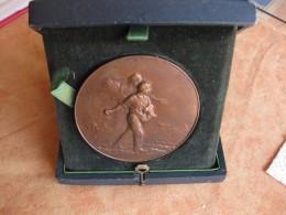 Médaille Producteurs De Nitrate De Soude Du Chili, Par Louis Patriache - France