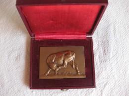 Médaille Veau. Offert Par Ph. Monin Député De L'Yonne 1946-1958, Par DELANDRE - France