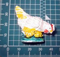 GALLINA CON PULCINI - Birds - Chicken