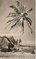 CPA-1950-AFRIQUE-GABON-BORD DE MER-La PLAGE-TBE - Gabon