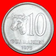 # BRAZIL: PARAGUAY ★ 10 GUARANIES 1975 FAO COW! LOW START ★ NO RESERVE! - Paraguay