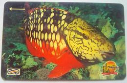 15MSAD Fish $20 - Malaysia