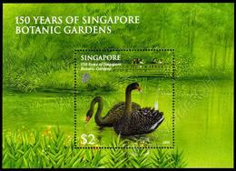 Singapore 2009: Foglietto Giardini Botanici / Botanic Gardens S/S ** - Swans