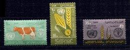 Palestine  *  N° 88 à 90 - Lutte Contre La Faim - Palestina