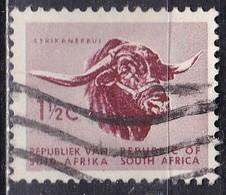 Sud Africa, 1961 - 1 1/2c Afrikander Bull - Nr.256 Usato° - Sud Africa (1961-...)