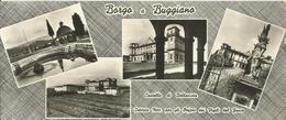 BORGO A BUGGIANO ISTITUTO NAZIONALE PER GLI ORFANI DEI VIGILI DEL FUOCO (297) - Altre Città