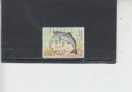 IRLANDA  1982 - Unificato 477° - Fauna - Pesci - 1949-... Repubblica D'Irlanda